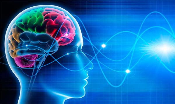 Mindfulness para empresas y organizaciones